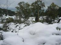 neve sul monte Bonifato - Riserva Naturale Orientata Bosco d'Alcamo - 15 febbraio 2009   - Alcamo (2221 clic)