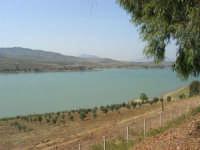 LAGO POMA - lago artificiale nei pressi di Partinico - 5 ottobre 2007   - Partinico (955 clic)