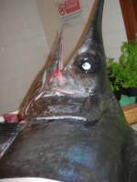 Pescheria Randazzo in via Guglielmo Marconi: pesce spada - 18 agosto 2007   - Castellammare del golfo (1548 clic)
