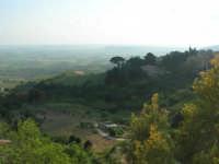 panorama dalla periferia - 3 maggio 2009   - Salemi (2431 clic)
