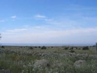 Capo San Vito - lungo la costa lato nord - 10 maggio 2009   - San vito lo capo (1792 clic)