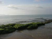 spiaggia di levante - golfo di Castellammare - 1 marzo 2009  - Balestrate (2958 clic)