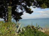 Baia di Guidaloca - 8 dicembre 2009   - Castellammare del golfo (1550 clic)