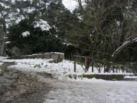neve sul monte Bonifato - Riserva Naturale Orientata Bosco d'Alcamo - 15 febbraio 2009  - Alcamo (2356 clic)