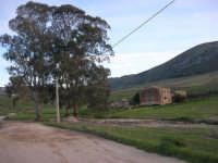 alle pendici della Montagna Grande - 21 febbraio 2009   - Fulgatore (4791 clic)