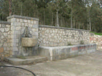 Bosco di Scorace - fontana ed abbevetatoio- 18 gennaio 2009   - Buseto palizzolo (3500 clic)