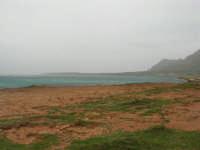 Macari - Golfo del Cofano - 29 marzo 2009  - San vito lo capo (1831 clic)