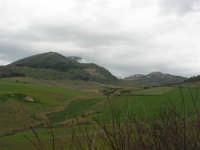panorama della campagna alcamese e monte Bonifato  - 15 febbraio 2009   - Alcamo (2215 clic)