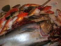 Pescheria Randazzo in via Guglielmo Marconi: il banco del pesce - 18 agosto 2007    - Castellammare del golfo (2008 clic)