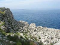 Capo San Vito - la costa rocciosa e l'azzurro del mare - 10 maggio 2009   - San vito lo capo (1529 clic)