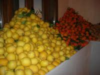 Gli altari di San Giuseppe - limoni ed arance da donare ai visitatori - 18 marzo 2009   - Balestrate (3800 clic)