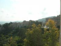 periferia - 3 maggio 2009   - Salemi (1709 clic)