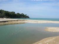Baia di Guidaloca - fiume - 21 febbraio 2009  - Castellammare del golfo (1287 clic)