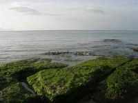 spiaggia di levante - golfo di Castellammare - 1 marzo 2009  - Balestrate (3047 clic)
