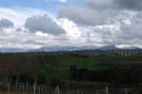 Contrada Sasi - panorama est - monti innevati - 13 febbraio 2009  - Alcamo (2597 clic)