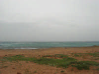 Macari - Golfo del Cofano - il forte vento di scirocco spazza il mare e solleva mulinelli d'acqua che partono dalla riva e si allontanano velocemente verso il largo - 29 marzo 2009  - San vito lo capo (1170 clic)