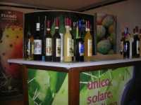 liquori a base di ficodindia - BeliCittà - 7 dicembre 2009    - Castelvetrano (4441 clic)