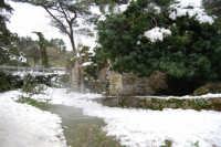 neve sul monte Bonifato - Riserva Naturale Orientata Bosco d'Alcamo - La Funtanazza, grande serbatoio pubblico di età medievale - 15 febbraio 2009   - Alcamo (5224 clic)