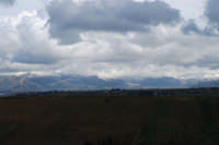 Contrada Sasi - panorama est - monti innevati - 13 febbraio 2009  - Alcamo (2471 clic)