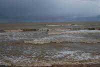 spiaggia Plaja - il mare, a seguito delle abbondanti piogge, ha cambiato colore - 14 febbraio 2009  - Castellammare del golfo (1841 clic)