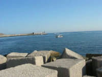 al porto - 18 agosto 2007    - Castellammare del golfo (662 clic)