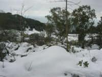neve sul monte Bonifato - Riserva Naturale Orientata Bosco d'Alcamo - 15 febbraio 2009  - Alcamo (1781 clic)