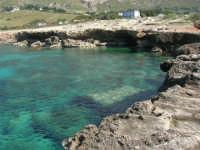 Golfo del Cofano: mare stupendo - 24 febbraio 2008   - San vito lo capo (468 clic)