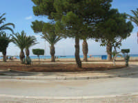 giardino adiacente alla spiaggia - 10 maggio 2009   - San vito lo capo (1826 clic)