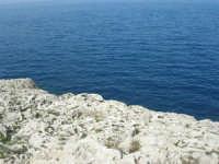 Capo San Vito - la costa rocciosa e l'azzurro del mare - 10 maggio 2009   - San vito lo capo (1771 clic)