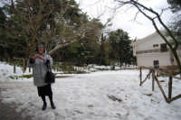 neve sul monte Bonifato - Riserva Naturale Orientata Bosco d'Alcamo - 15 febbraio 2009   - Alcamo (2479 clic)
