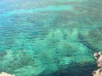 Golfo del Cofano: mare stupendo - 24 febbraio 2008   - San vito lo capo (502 clic)