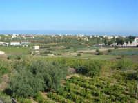 contrada San Leonardo - panorama - 2 ottobre 2007  - Alcamo (768 clic)