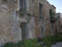 ruderi del paese distrutto dal terremoto del gennaio 1968 - 2 ottobre 2007  - Poggioreale (725 clic)