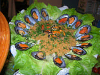 11° Cous Cous Fest - 26 settembre 2008     - San vito lo capo (770 clic)