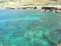 Golfo del Cofano: mare stupendo - 24 febbraio 2008   - San vito lo capo (535 clic)