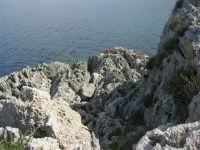 Capo San Vito - la costa rocciosa e l'azzurro del mare - 10 maggio 2009   - San vito lo capo (1648 clic)