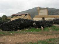 Tonnara - barche - 16 novembre 2008   - Bonagia (699 clic)