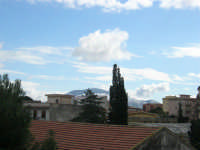 Monte Bonifato innevato, visto da Castellammare - 14 febbraio 2009   - Castellammare del golfo (1746 clic)