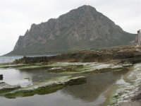 scogliera e monte Cofano - 25 aprile 2006   - Cornino (4519 clic)