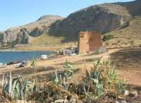 Riserva Naturale Orientata Monte Cofano - Torre - 29 luglio 2009  - Custonaci (1651 clic)