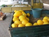 meloni gialli - 18 settembre 2007  - Alcamo (2303 clic)