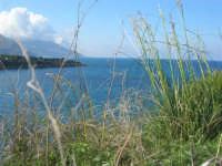 Baia di Guidaloca - 5 aprile 2009  - Castellammare del golfo (1001 clic)