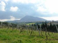 campagna alcamese e monte Bonifato - 23 febbraio 2009   - Alcamo (2246 clic)
