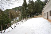 neve sul monte Bonifato - Riserva Naturale Orientata Bosco d'Alcamo - 15 febbraio 2009   - Alcamo (2296 clic)