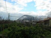 Monte Bonifato innevato - 14 febbraio 2009   - Alcamo (2204 clic)