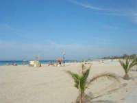 la spiaggia - 10 maggio 2009   - San vito lo capo (1680 clic)