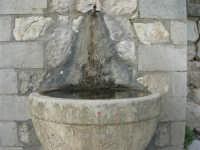 Bosco di Scorace - fontana - 18 gennaio 2009   - Buseto palizzolo (3931 clic)