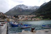 vista dal porto della città e del monte Inici innevato - 14 febbraio 2009  - Castellammare del golfo (1278 clic)
