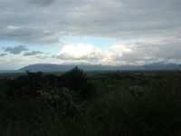 monti di Palermo innevati - 15 febbraio 2009   - Alcamo (2909 clic)