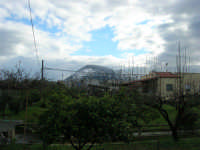 Monte Bonifato innevato - 14 febbraio 2009   - Alcamo (2625 clic)